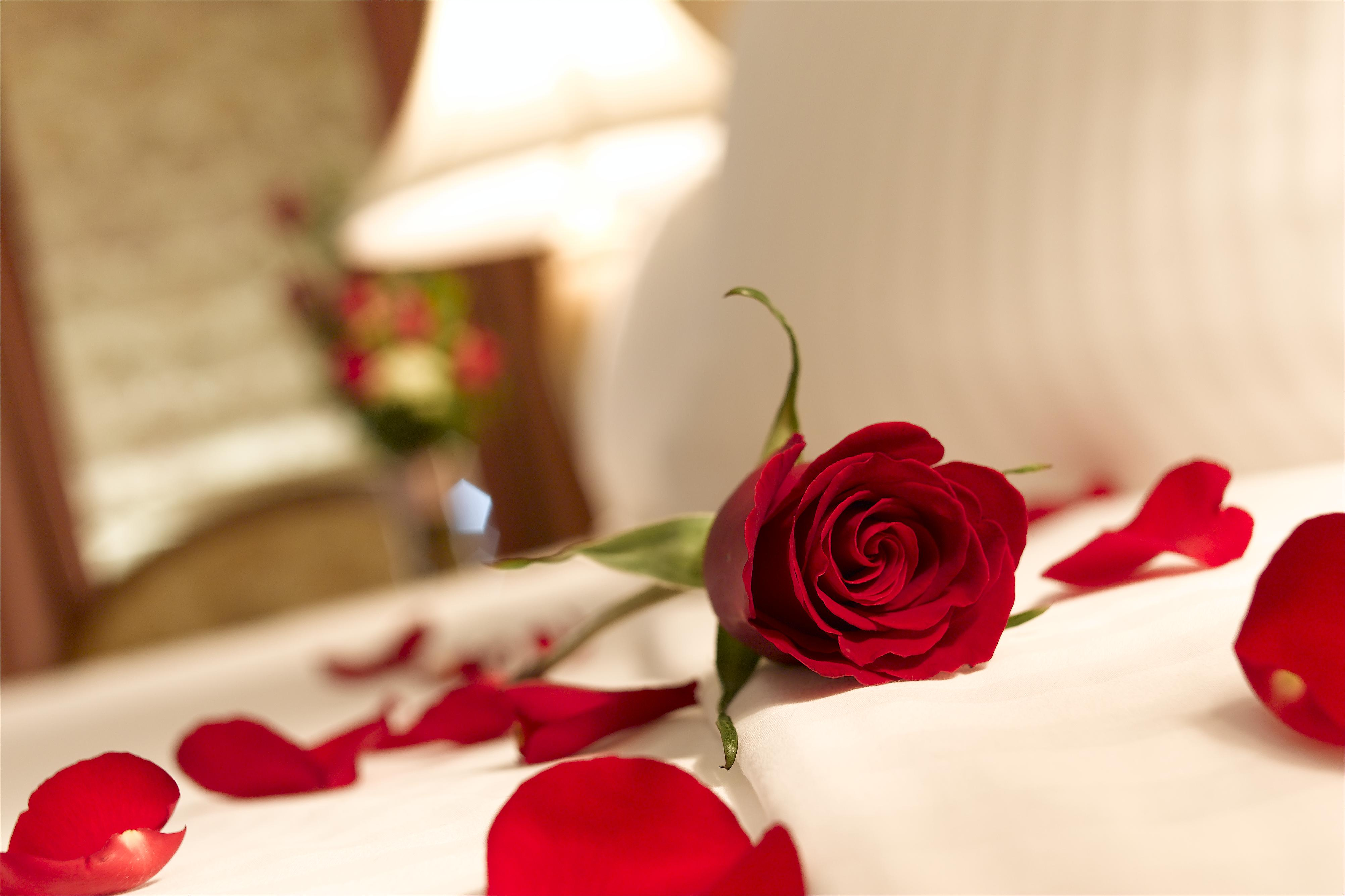 Romantic Bed With Roses